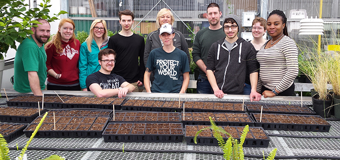 DC students potting milkweed seedlings in the greenhouse at DC's Centre for Food (CFF) in Whitby.