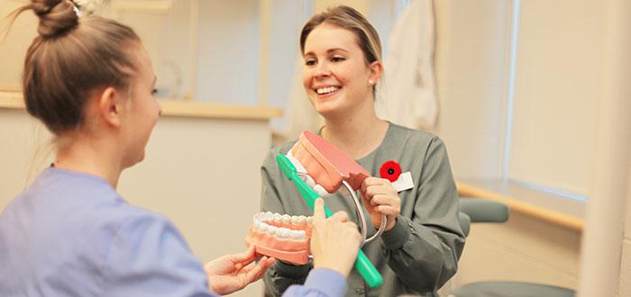 Dental hygiene demonstration